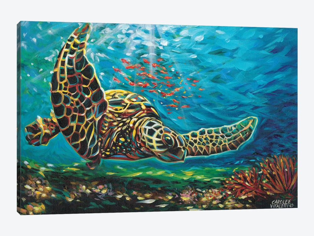 Deep Sea Swimming I by Carolee Vitaletti 1-piece Canvas Print