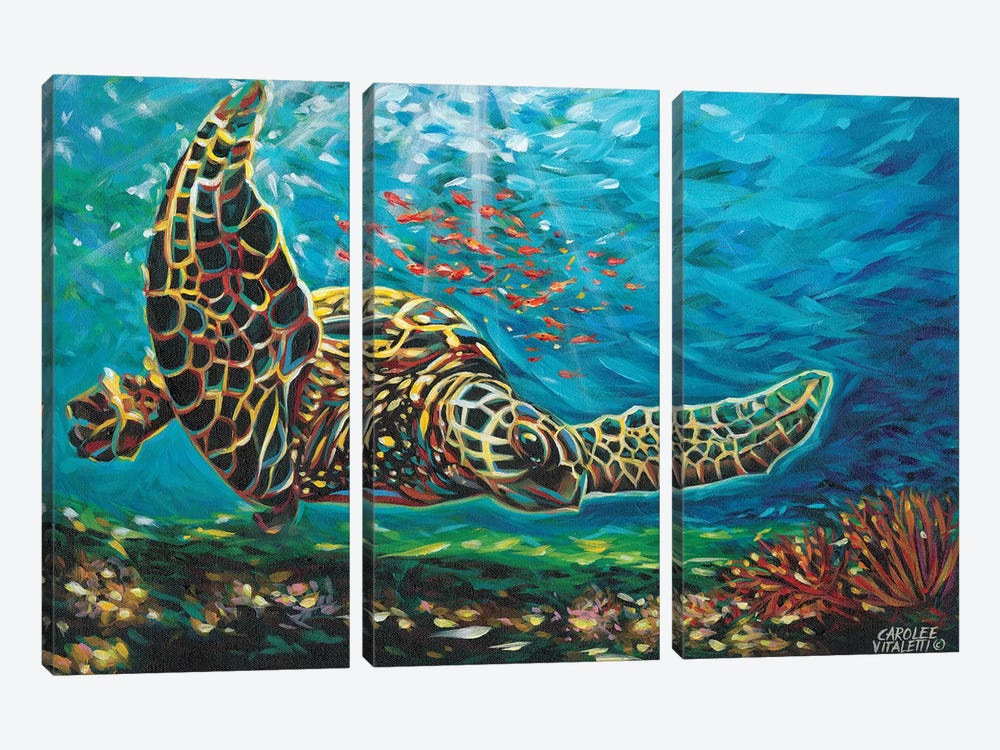 Deep Sea Swimming I by Carolee Vitaletti 3-piece Canvas Print