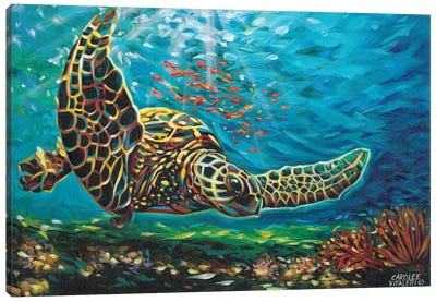 Deep Sea Swimming I Canvas Art Print