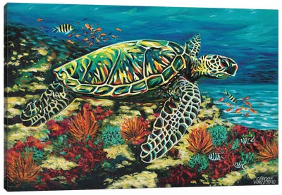 Deep Sea Swimming II by Carolee Vitaletti Canvas Art Print