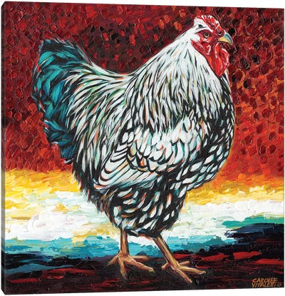 Fancy Chicken I Canvas Art Print