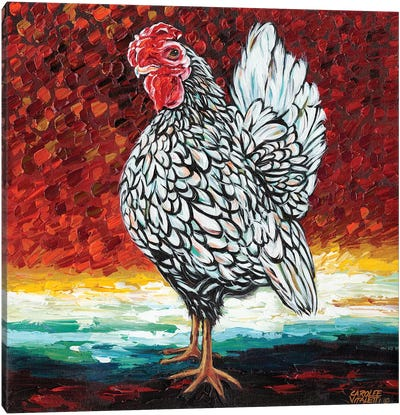 Fancy Chicken II Canvas Art Print