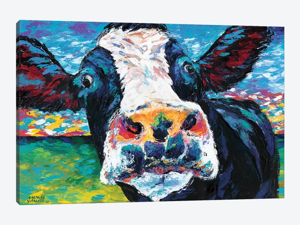Curious Cow II by Carolee Vitaletti 1-piece Canvas Print