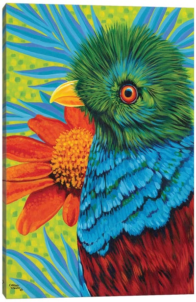 Bird In The Tropics II Canvas Art Print