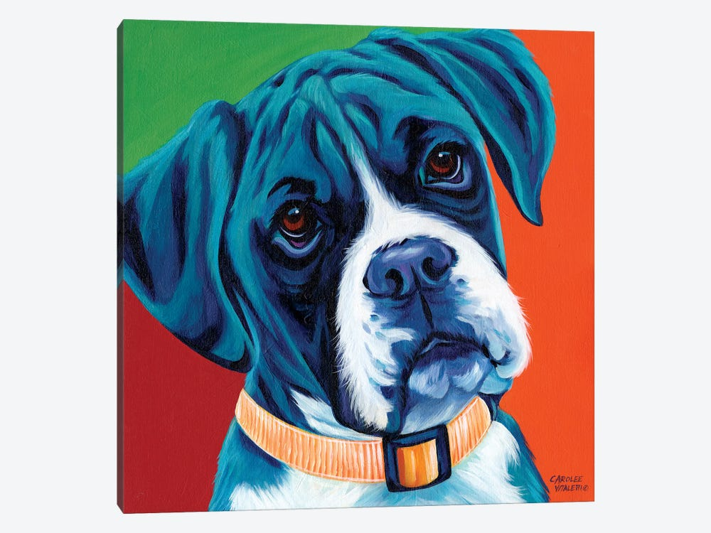 Cute Pups I by Carolee Vitaletti 1-piece Canvas Art Print