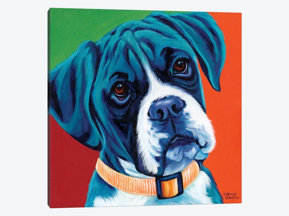 Cute Pups I by Carolee Vitaletti 1-piece Canvas Art Print