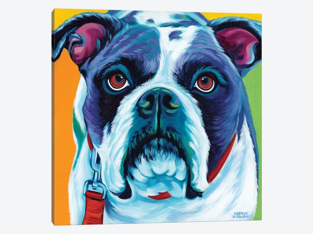 Cute Pups II by Carolee Vitaletti 1-piece Canvas Wall Art