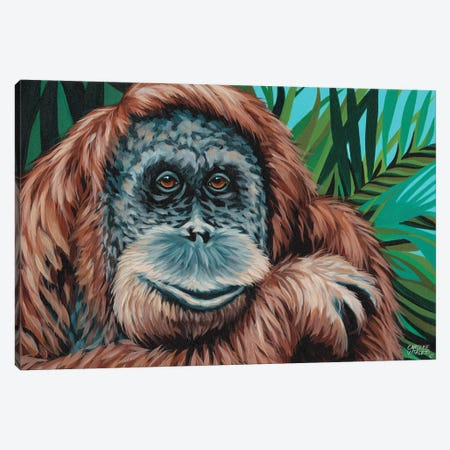 Jungle Monkey I Canvas Print #VIT47} by Carolee Vitaletti Canvas Wall Art