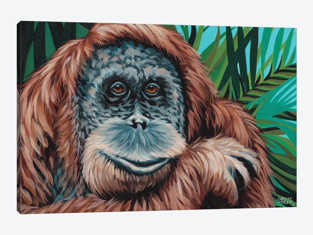 Jungle Monkey I by Carolee Vitaletti 1-piece Canvas Art Print