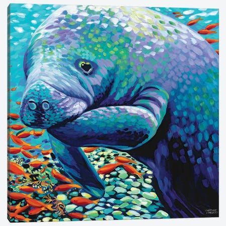 Sea Sweetheart II Canvas Print #VIT49} by Carolee Vitaletti Canvas Art Print
