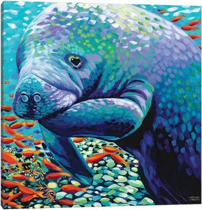 Sea Sweetheart II Canvas Art Print