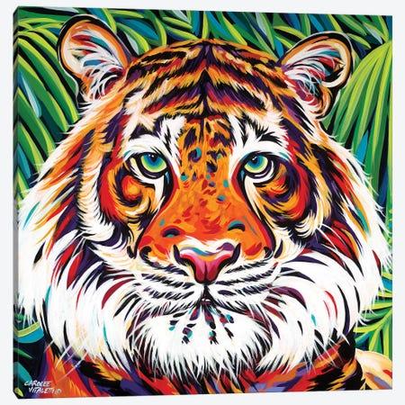 Wild Beauties I 3-Piece Canvas #VIT54} by Carolee Vitaletti Canvas Art Print