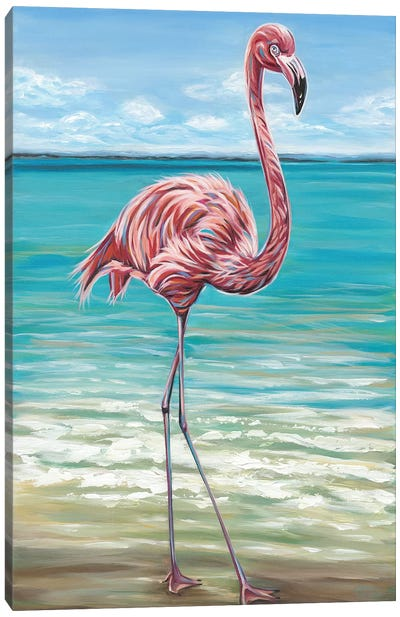 Beach Walker Flamingo I Canvas Art Print