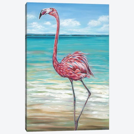Beach Walker Flamingo II Canvas Print #VIT56} by Carolee Vitaletti Canvas Print