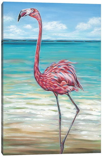 Beach Walker Flamingo II by Carolee Vitaletti Canvas Art Print