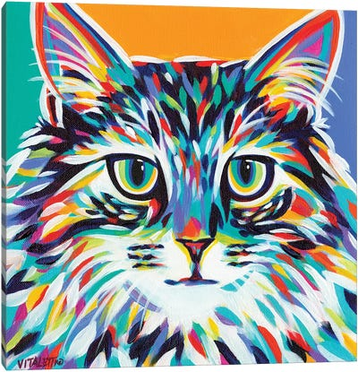 Dramatic Cats I by Carolee Vitaletti Canvas Art Print