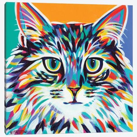 Dramatic Cats I Canvas Print #VIT60} by Carolee Vitaletti Art Print