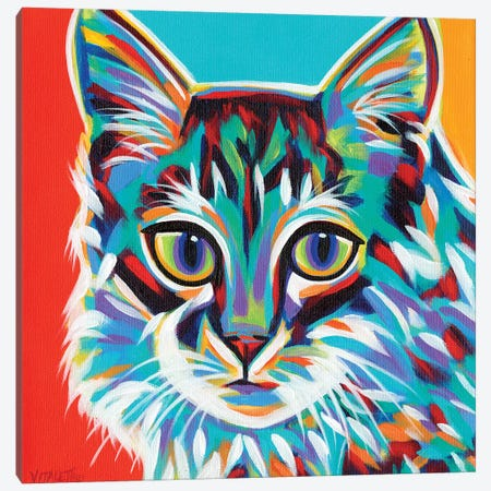 Dramatic Cats II Canvas Print #VIT61} by Carolee Vitaletti Art Print