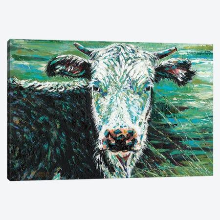 Marshland Cow I 3-Piece Canvas #VIT64} by Carolee Vitaletti Canvas Art