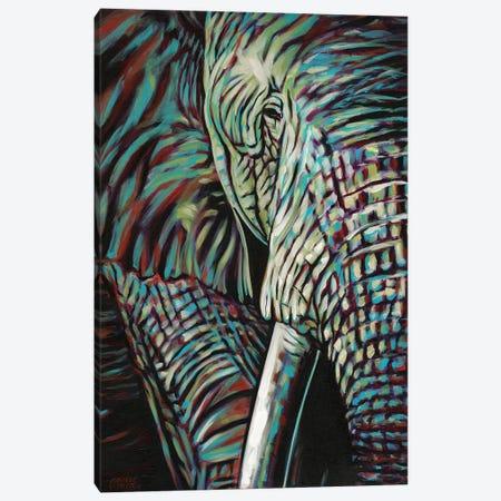 Powerful Wildlife I Canvas Print #VIT66} by Carolee Vitaletti Canvas Wall Art