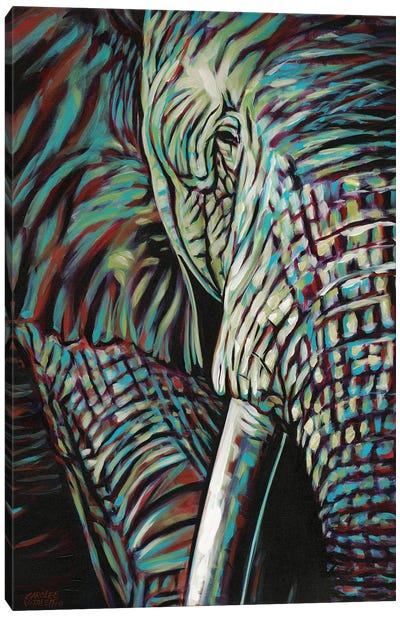Powerful Wildlife I Canvas Art Print