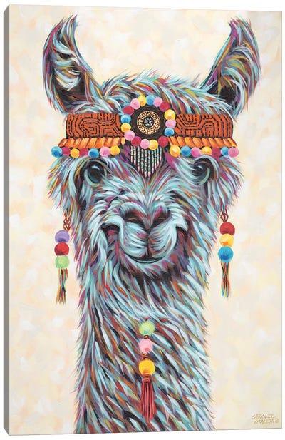 Hippie Llama I Canvas Art Print