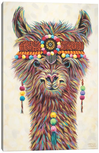 Hippie Llama II by Carolee Vitaletti Canvas Art Print