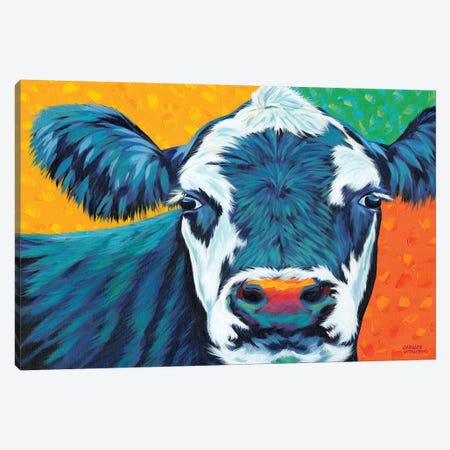 Colorful Country Cows I Canvas Print #VIT74} by Carolee Vitaletti Canvas Art Print