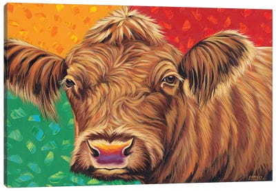 Colorful Country Cows II by Carolee Vitaletti Canvas Art Print
