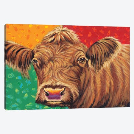 Colorful Country Cows II 3-Piece Canvas #VIT75} by Carolee Vitaletti Canvas Print