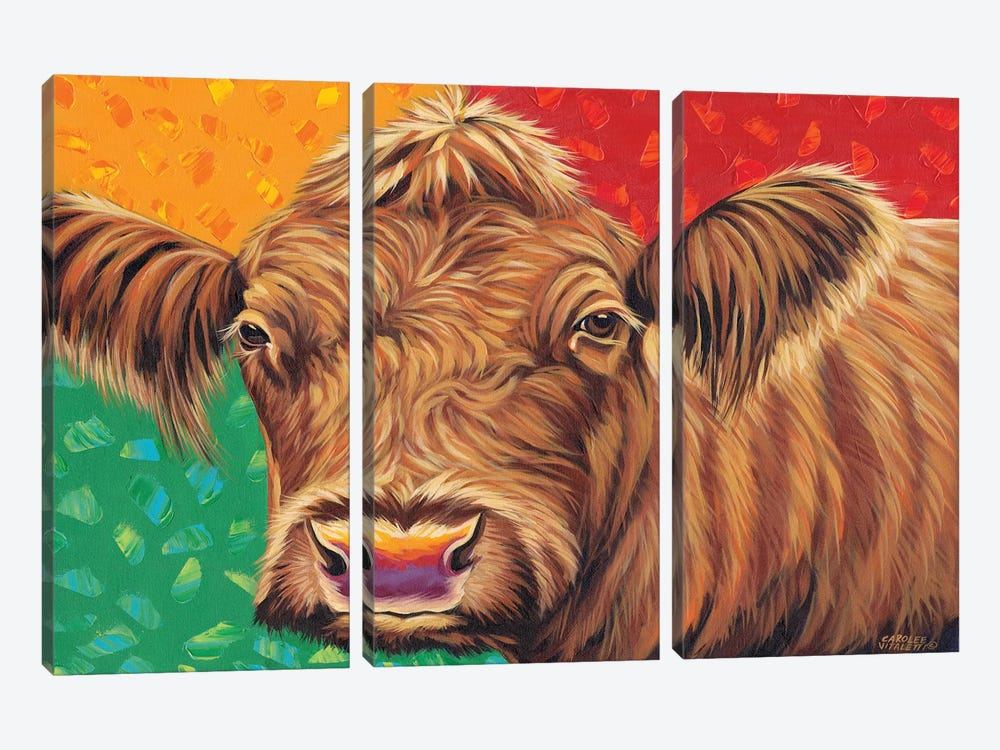 Colorful Country Cows II by Carolee Vitaletti 3-piece Canvas Art