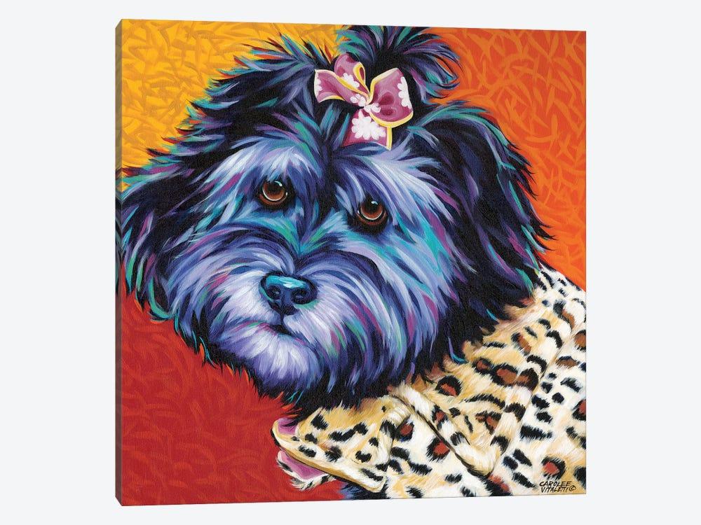 Cute Pups III by Carolee Vitaletti 1-piece Canvas Wall Art
