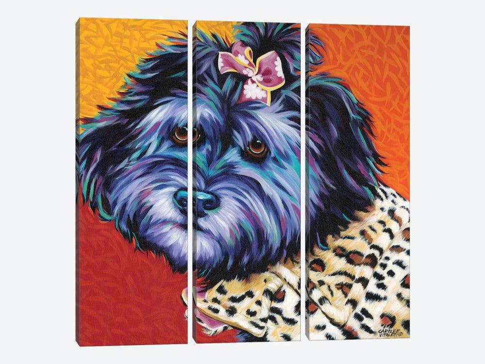 Cute Pups III by Carolee Vitaletti 3-piece Canvas Artwork