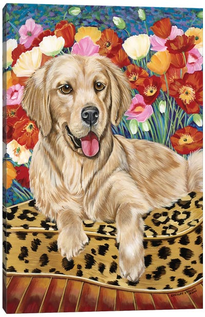 Golden Boy Retriever Canvas Art Print