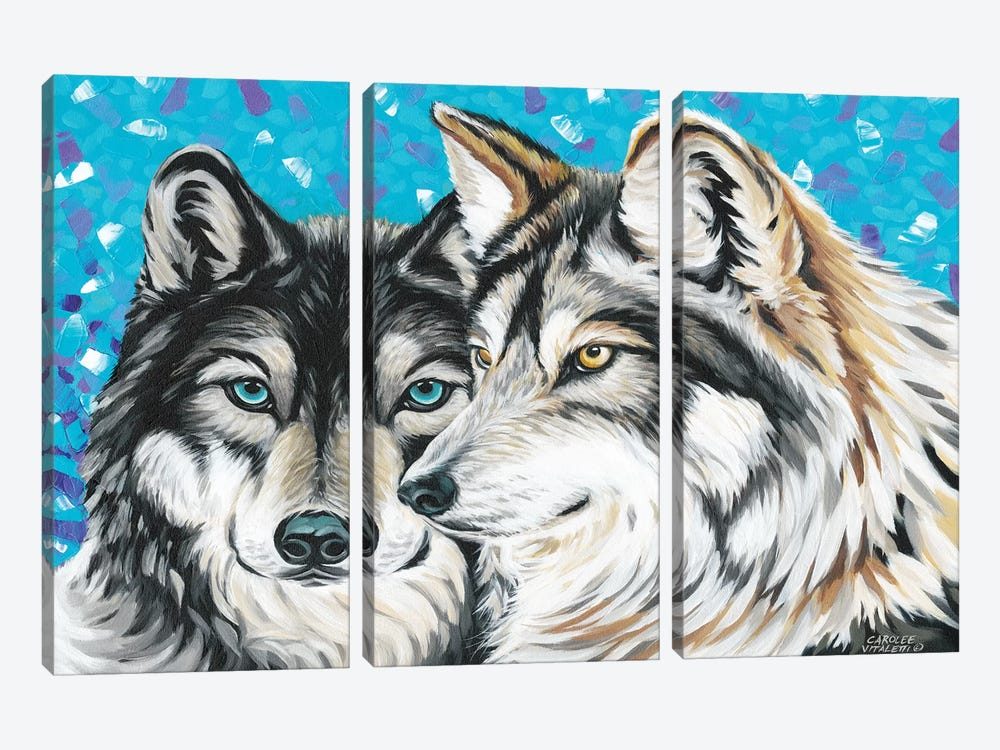 Grey Wolf I by Carolee Vitaletti 3-piece Canvas Art Print