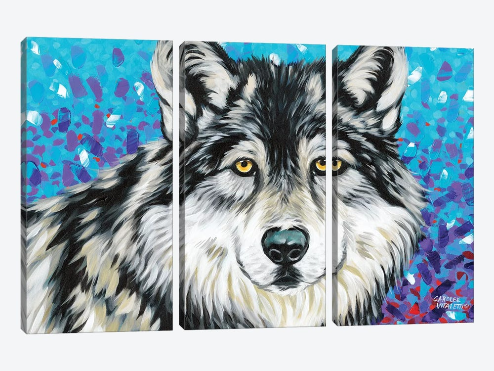 Grey Wolf II by Carolee Vitaletti 3-piece Canvas Wall Art