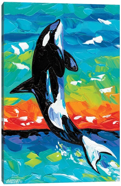 Ocean Friends I by Carolee Vitaletti Canvas Art Print