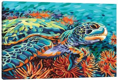 Sea Sweetheart I Canvas Art Print