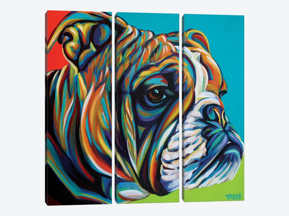 Dog Friend I 3-piece Canvas Art Print