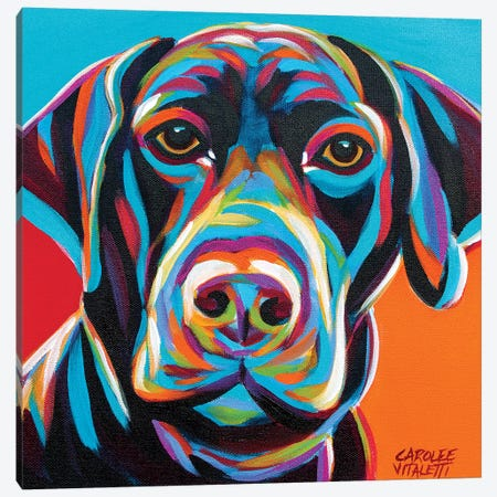 Dog Friend II Canvas Print #VIT97} by Carolee Vitaletti Art Print