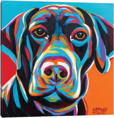 Dog Friend II by Carolee Vitaletti Canvas Art Print