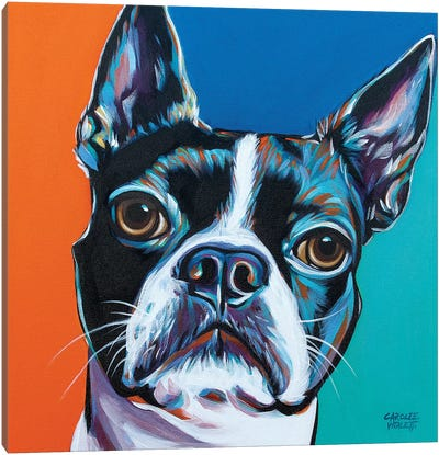 Dog Friend III by Carolee Vitaletti Canvas Art Print