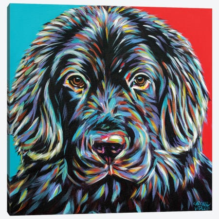 Canine Buddy I Canvas Print #VIT99} by Carolee Vitaletti Canvas Artwork