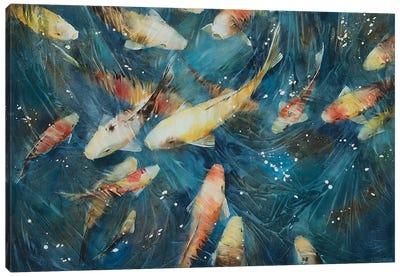 Koi Fish I Canvas Art Print