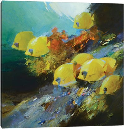 Among The Corals Canvas Art Print