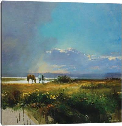 Before The Rain Canvas Art Print