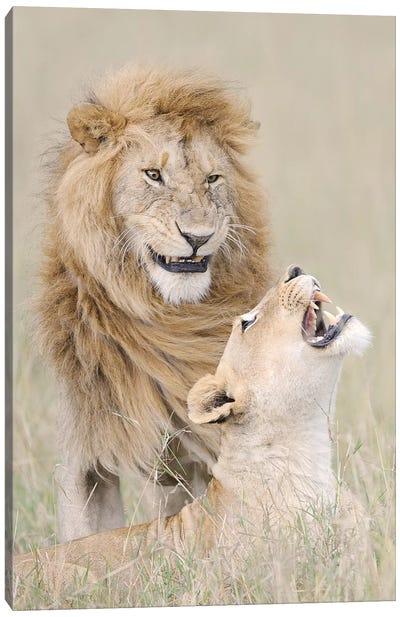 Lion Lover Canvas Art Print