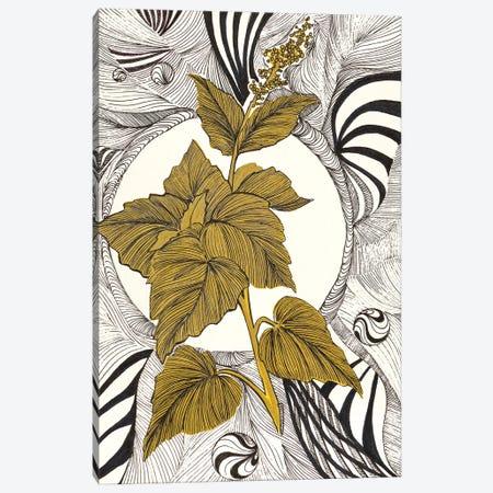 Graphic Nature Plant Canvas Print #VLC45} by Valeria Luchistaya Canvas Art Print