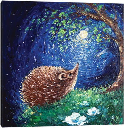 Hedgehog And His Dream Canvas Art Print