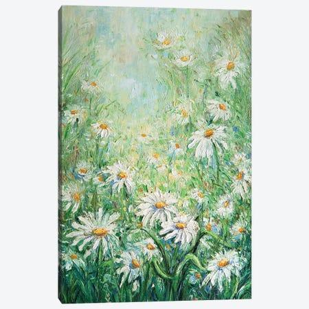 Summer Daisies Canvas Print #VLK31} by Vlada Koval Art Print